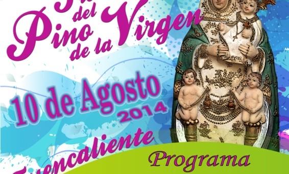Fiesta-Virgen-del-Pino-2014