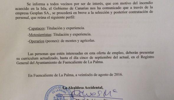 contratacion personal incendio forestal gesplan 5 septiembre 2016