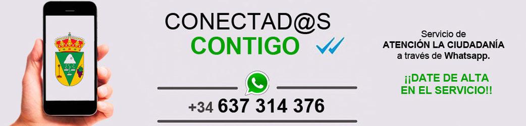 Banner - Whatsapp Municipal - Conectados contigo