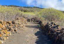 Recuperación-Caminos-Reales-Fuencaliente
